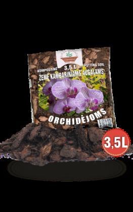 orchidejoms 3.5 L